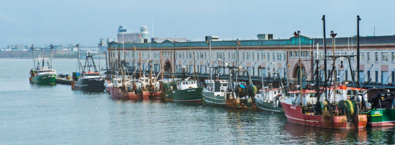 Atlantic Coast Seafood